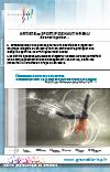 Plaquette artiste ou sportif de haut niveau 2013